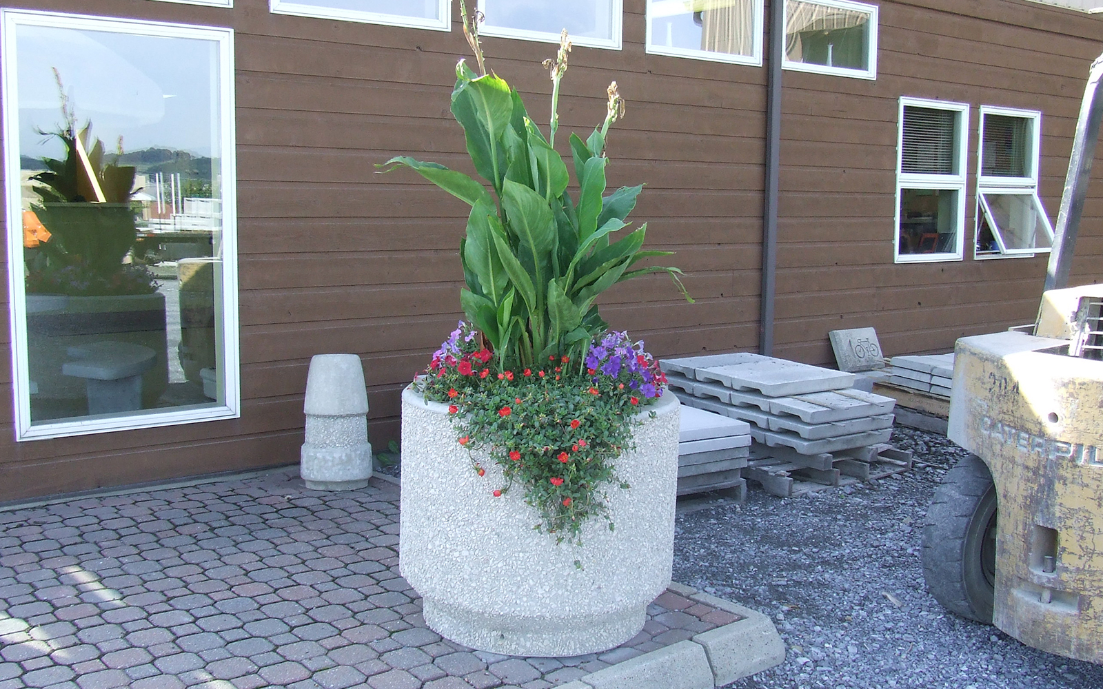 round-planter-with-plants