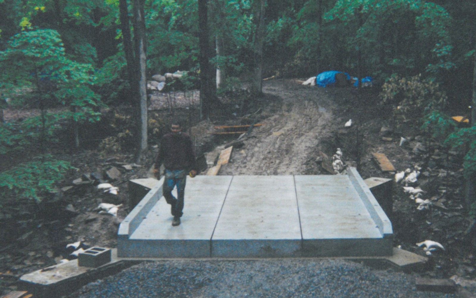 custom-bridge-in-woods